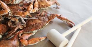 St. Michael's Crabs