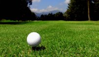 Don't Miss the 19th Hole at Fox Hollow Golf Club