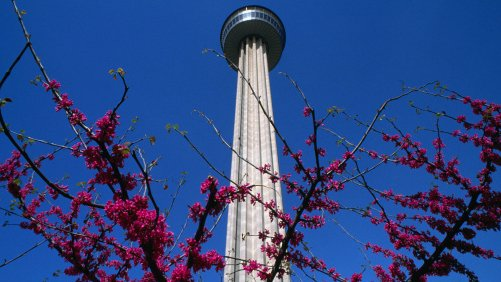 Get Some Perspective at the Tower of the Americas