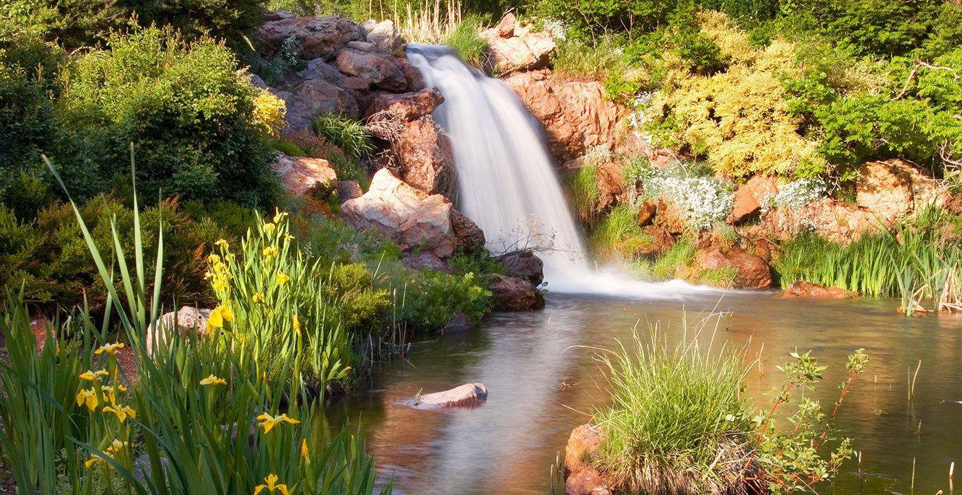 Wander Through 100 Acres of Botanical Beauty