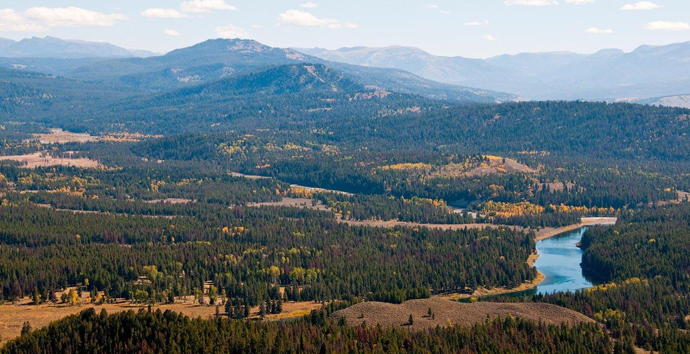 A Winding Drive Rises to Tetons Views